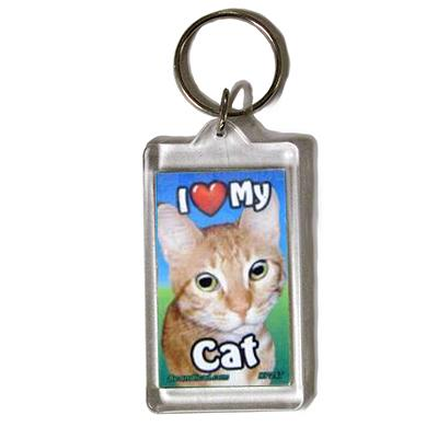 Plastic Keyring Cat Tabby Orange