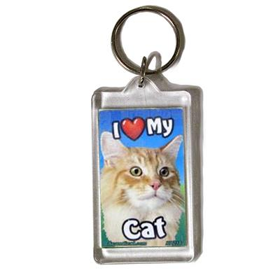Plastic Keyring Cat Main Coon Orange