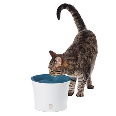 CatIt Sense Cat and Small Dog Drinking Fountain