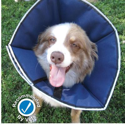 ProCone Soft Elizabethan Large Collar for Dogs