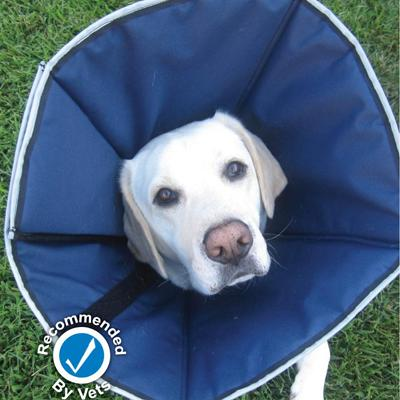 ProCone Soft Elizabethan XLarge Collar for Dogs