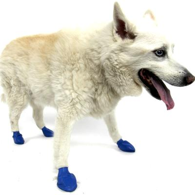 Pawz Natural Rubber Dog Boot Medium 12pk