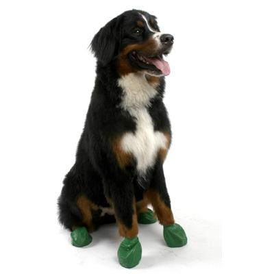 Pawz Natural Rubber Dog Boot Extra Large 12pk