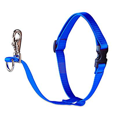 Dog Harness No Pull Training