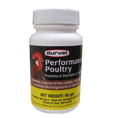 High Perfomance Probiotic Poultry Supplement 60gm