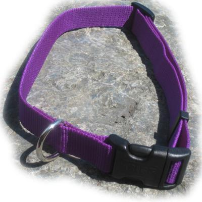 Nylon Dog Collar Adjustable 1-inch Purple