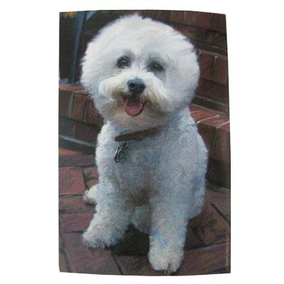 Robert McClintock Licensed Garden Flag Bichon Frise