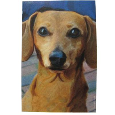 Robert McClintock Licensed Garden Flag Dachshund