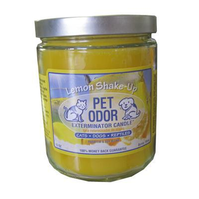 Pet Odor Eliminator Candle Lemon Shake-Up-Seasonal