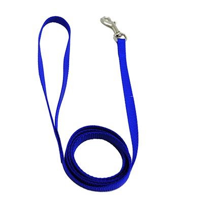 Nylon Dog Leash 3/8-inch x  6 foot Blue