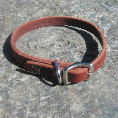 Circle T Latigo Single Layer Leather Dog Collar 14 inch