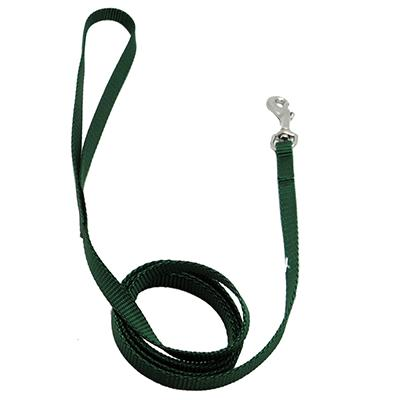 Nylon Dog Leash 3/8-inch x  4 foot Green