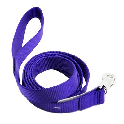 Nylon Dog Leash 1-inch x 6 foot Purple