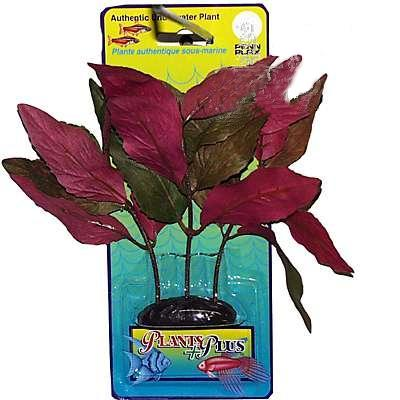 Hygrophila Medium Plastic Aquarium Plant
