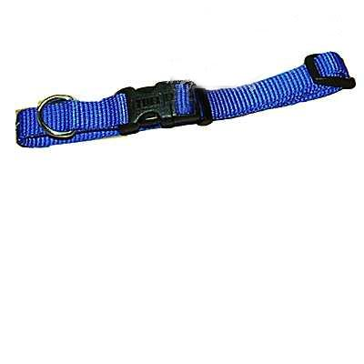 Nylon Dog Collar Adjustable 5/8-inch Blue