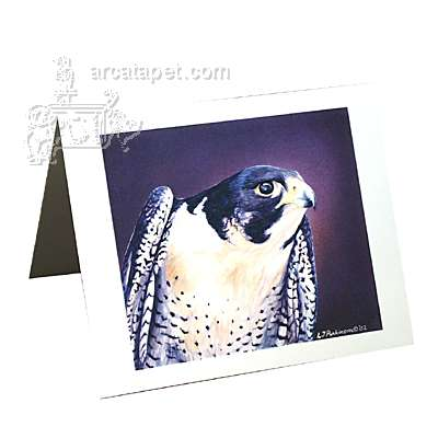 Note Card Peregrine Falcon
