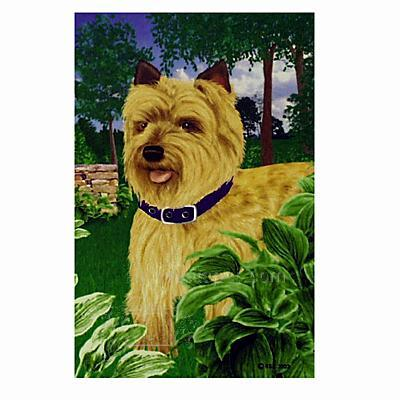GR8 Dogs Cairn Terrier Garden Flag