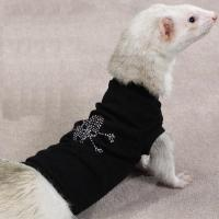 Ferret Apparel