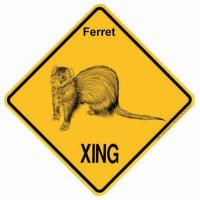 Ferret Signs