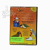 DVD#4 teach your Parrots Advanced Parrot Tricks