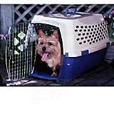 Doskocil Kennel Cab Fashion 26x18x16 Pet Carrier