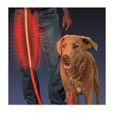 Nite Ize Nite-Dawg Lighted Flashing Dog Leash 5 ft