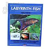 Labyrinth Fish Hardcover Book