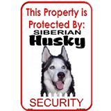Sign Siberian Husky Security 12 x 18 inch Aluminum