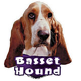 6-inch Vinyl Dog Decal Basset Hound Picture