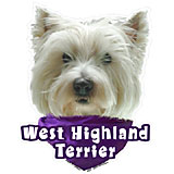 6-inch Vinyl Dog Decal West Highland White Terrier Picture