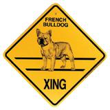 Xing Sign French Bulldog Plastic 10.5 x 10.5 inches
