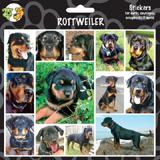 Arf Art Dog Sticker Pack Rottweiler