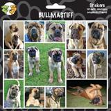 Arf Art Dog Sticker Pack Bull Mastiff