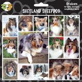Arf Art Dog Sticker Pack Shetland Sheepdog