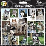 Arf Art Dog Sticker Pack Siberian Husky