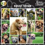 Arf Art Dog Sticker Pack Border Terrier