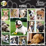 Arf Art Dog Sticker Pack Pit Bull Terrier