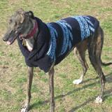 Handmade Dog Sweater Wool Navy Shawl Medium
