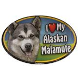 Dog Breed Image Magnet Oval Alaskan Malamute