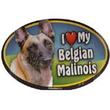 Dog Breed Image Magnet Oval Belgian Malinois