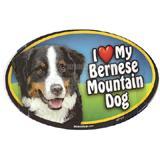 Dog Breed Image Magnet Oval Bernese Mountain Dog