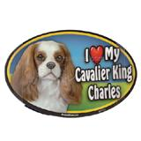 Dog Breed Image Magnet Oval Cavalier King Charles Spaniel