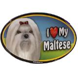 Dog Breed Image Magnet Oval Maltese