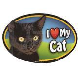 Cat Image Magnet Oval Black Cat