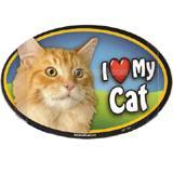 Cat Image Magnet Oval Orange Cat