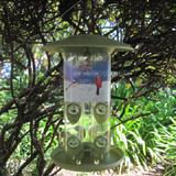 Birdscapes Safari Triple Tube Hanging Wild Bird Feeder