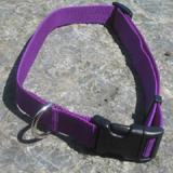 Nylon Dog Collar Adjustable 5/8-inch Purple
