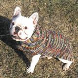 Handmade Dog Sweater Wool Multi-Colored Shawl XXLarge
