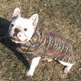 Handmade Dog Sweater Wool Multi-Colored Shawl XXXLarge