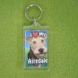 Plastic Keyring Airedale
